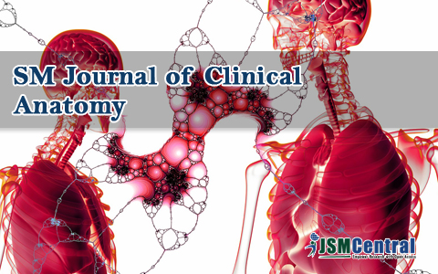 SM Journal of Clinical Anatomy